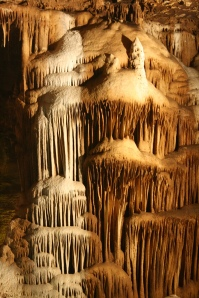Magnificent limestone  formations at Blanchard's Springs Caverns
